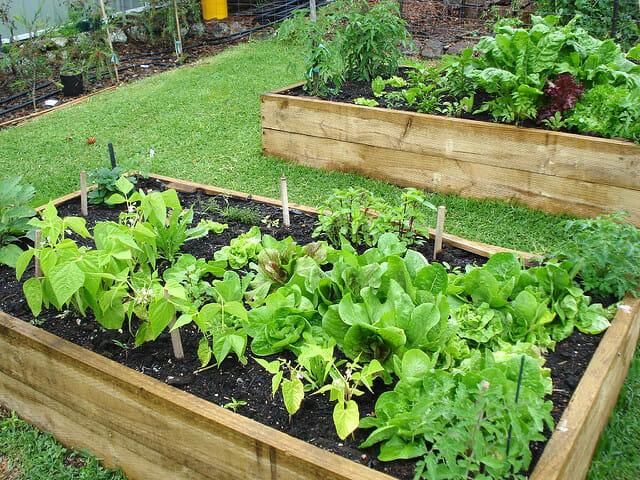 create Compost Landscape Company
