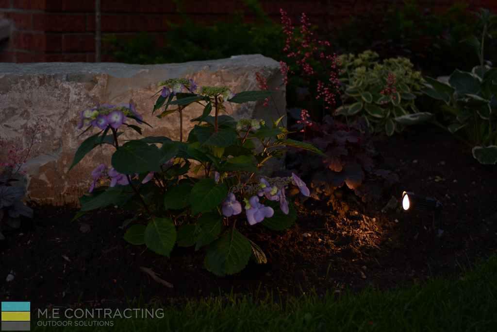 Armor stone, landscaping, lighting