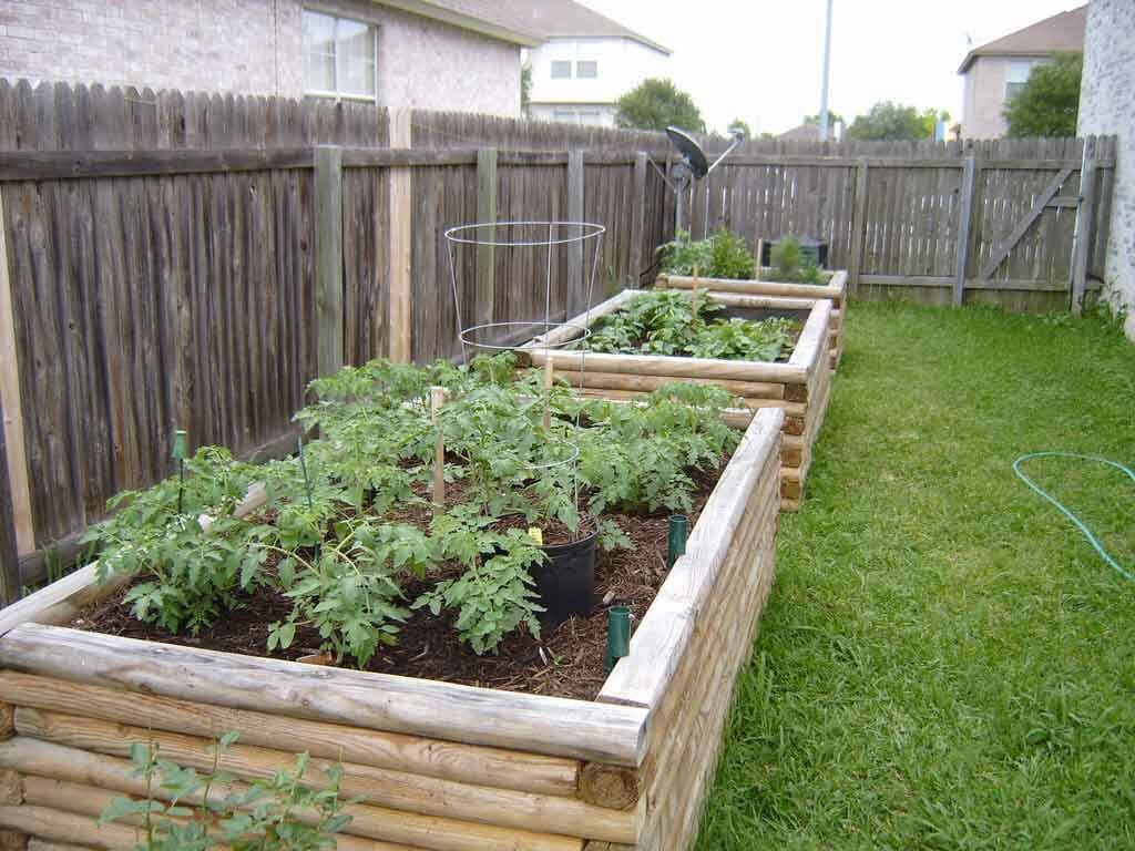 Raised Beds Toronto landscaping contractor